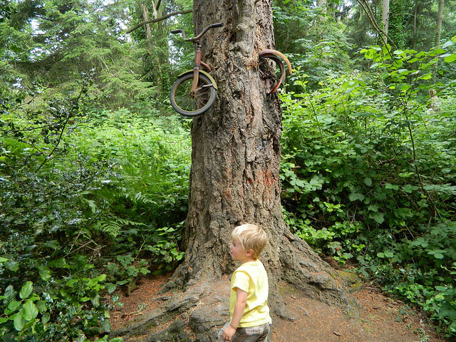 The famous bike in a tree!