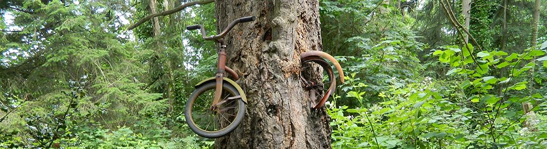 Vashon Island Bicycles
